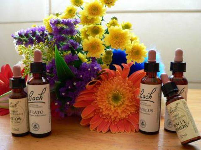 flores de bach y flores
