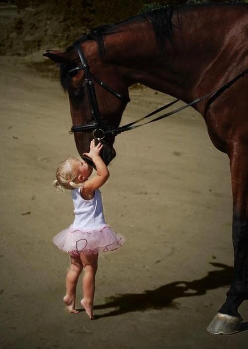 niña y caballo