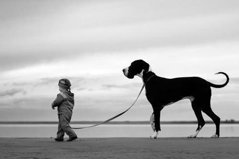 niño y perro grande