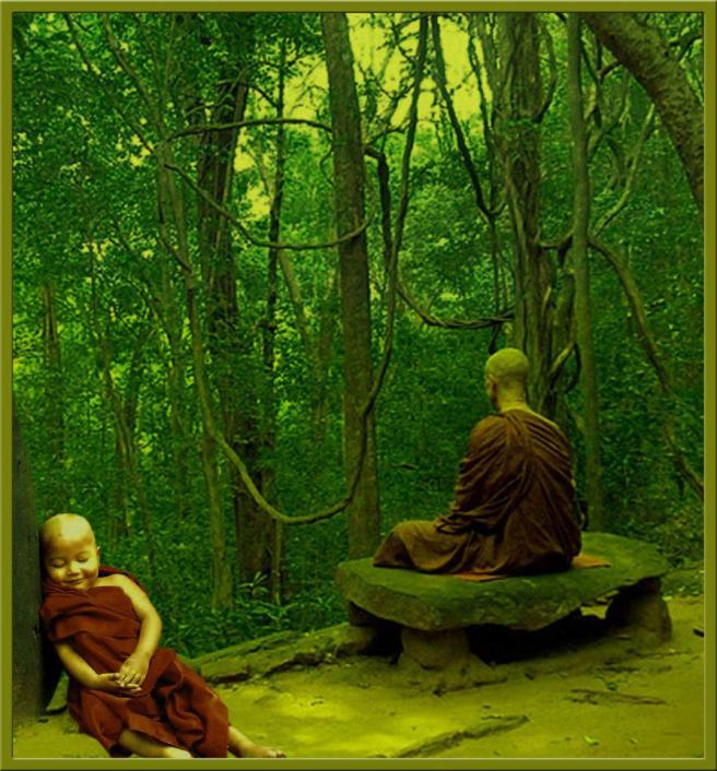 meditacion y paz