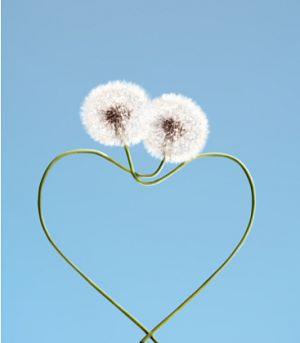 corazon natural