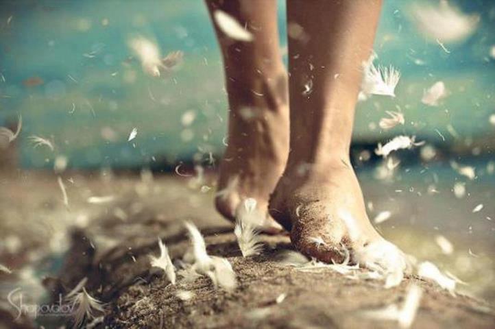 caminando pies y plumas