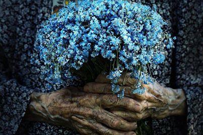 manos y flores