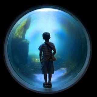 niño en bola azul