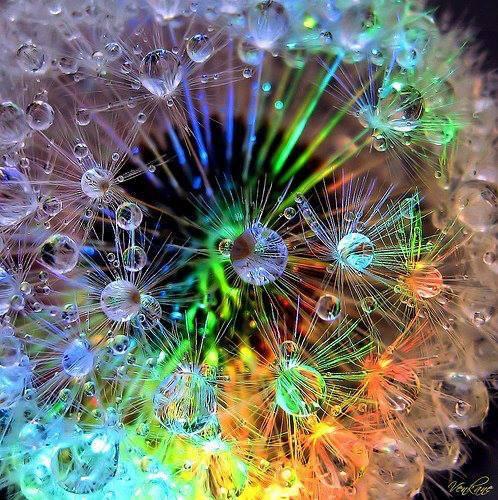 agua gotas colores