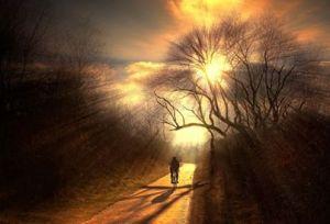 camino dorado  en bicicleta