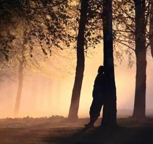 hombre bosque sombras