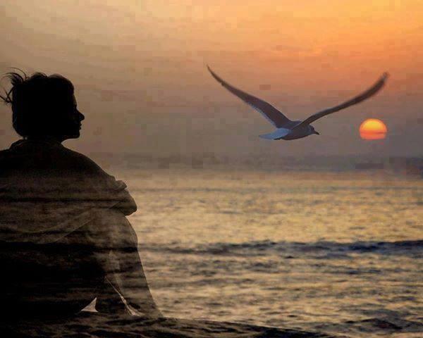 mujer,mar y pajaro
