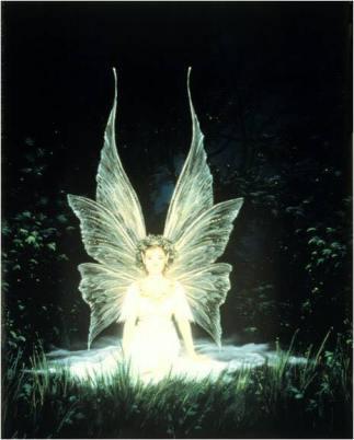 niña hada con alas