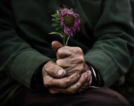 manos y flor