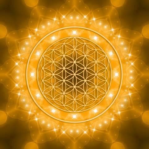 codigo la flor de vida oro