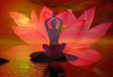 meditacion y loto