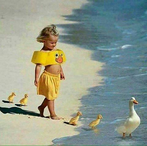 niña en fila de patos
